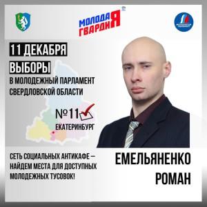 Кандидат в депутаты Роман Емельяненко